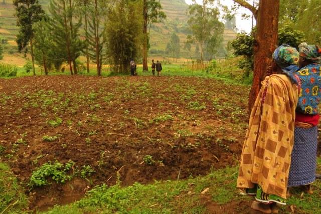 Ogled zemlje v skupnosti Nyakabungo